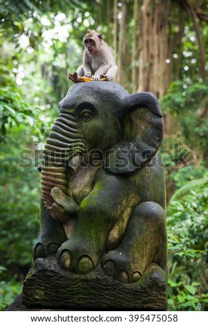Balinese long-tailed monkey sitting on the statue with banana in Monkey Forest Sanctuary, Ubud, Bali, Indonesia