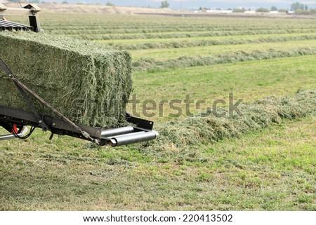 Baling hay in a farm field. - stock photo
