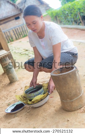 Ballapeu, Sulawesi, Indonesia - August 18, 2014: Unidentified young woman sifting coffee beans in the traditional way of Toraja, Sulawesi, Indonesia. Concept of manual working in developing countries. - stock photo