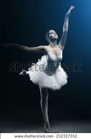Ballet dancer and stage shows - stock photo
