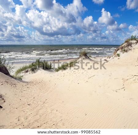 baltic dunes - stock photo