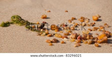 Baltic Sea amber on sandy - stock photo