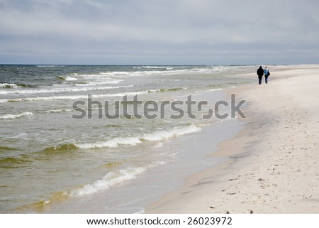 baltic sea and beach in spring