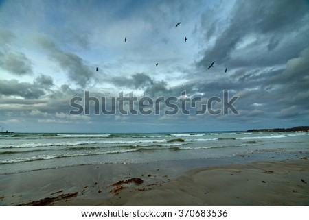Baltic sea seascape with seagulls