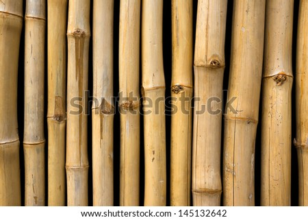 Bamboo background, isolated against black