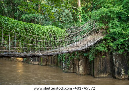 Bamboo bridge in deep forest