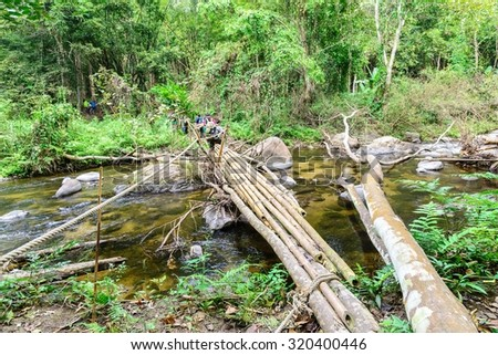 Bamboo bridge over rill in national park forest.