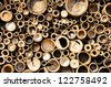 bamboo cross slice - stock photo