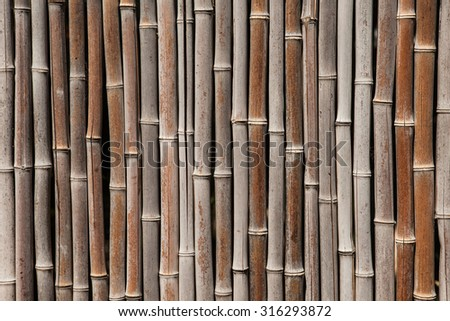 Bamboo fence background. Dry bamboo wall texture and background - stock photo
