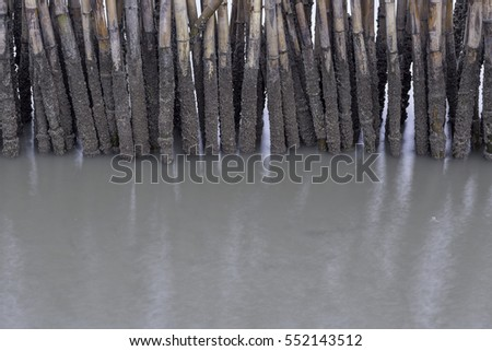Bamboo fence by the sea