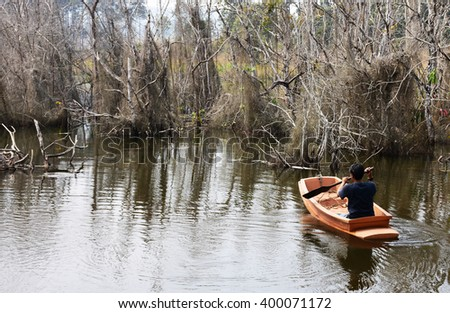 Bamboo forests wither in the lake is awesome. - stock photo