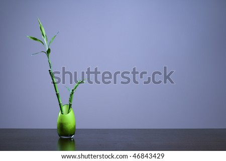 Bamboo in a green opaque glass vase sitting on a table or desk. Horizontal shot. - stock photo