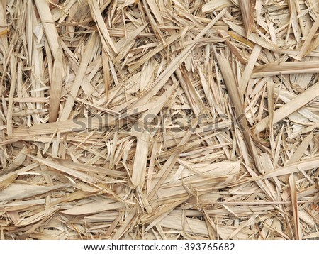 Bamboo leaf dry brown color background
