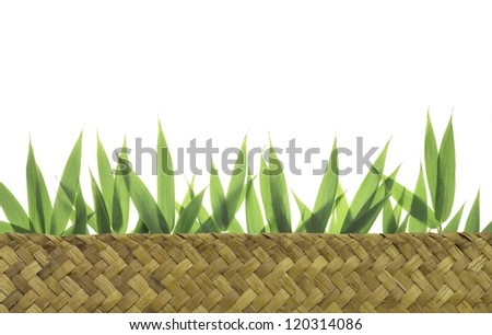 Bamboo leaves  in woven basket - stock photo
