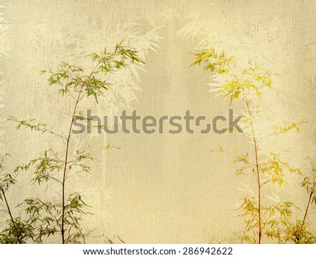 bamboo on old grunge antique paper textur - stock photo