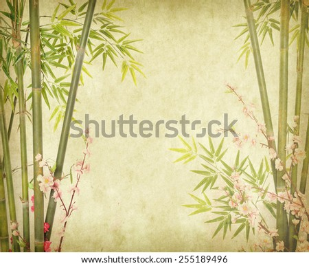 bamboo on old paper background