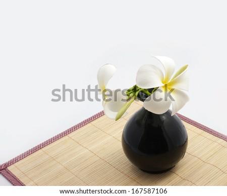 Bamboo sheets vase isolated white background. - stock photo