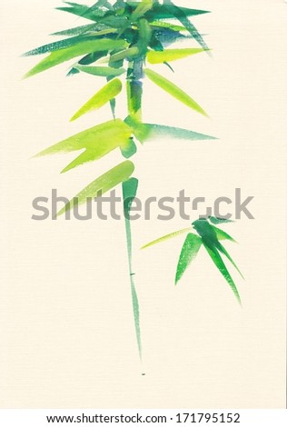 Bamboo shoots - stock photo
