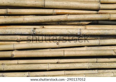 Bamboo stack background and texture. - stock photo