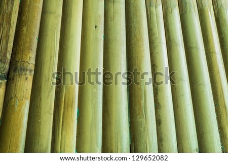 Bamboo texture for backgrounds.