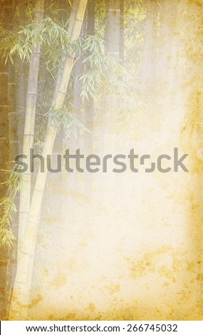 Bamboo texture with copyspace for text on grunge paper. Chinese old background with bamboo. Ancient paper with grange texture and tropical border for east concept in retro style. - stock photo