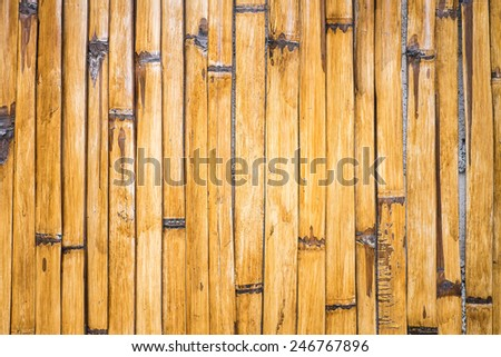 Bamboo wall background - stock photo