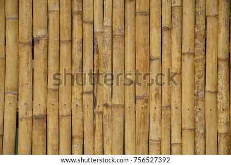 Bamboo wall in vertical nicely arrange pattern