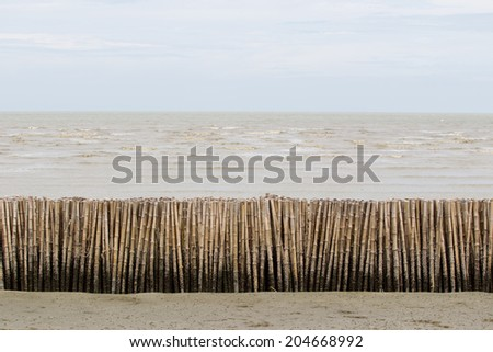 Bamboo water and wind breaker in cloudy sky. - stock photo