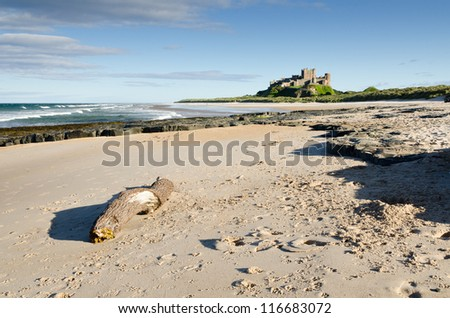 Bamburgh Castle and driftwood / Bamburgh Castle taken here from the north beach dates back to the 6/7th century - stock photo