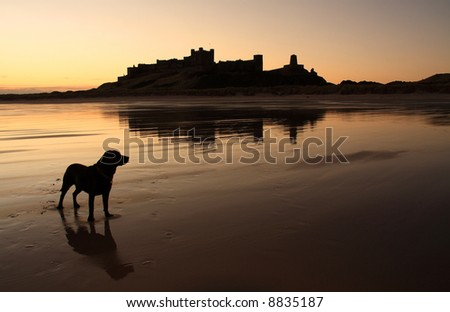 Bamburgh castle the north Northumberland coastline England - stock photo