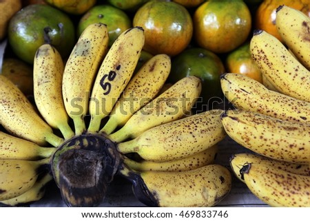 banana fruit on the island of ko tao in thailand in southeastasia