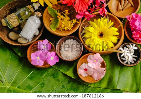 Banana leaf background- Health spa - stock photo
