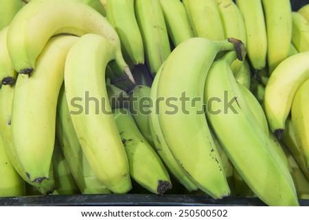 bananas close-up - stock photo
