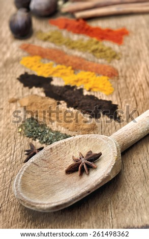 bands of different spices powder, anise  in  spoon on wood background - stock photo