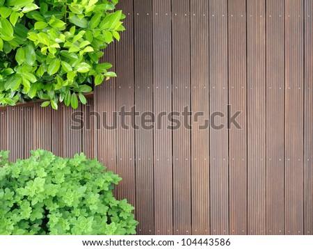 bangkirai terrace - stock photo