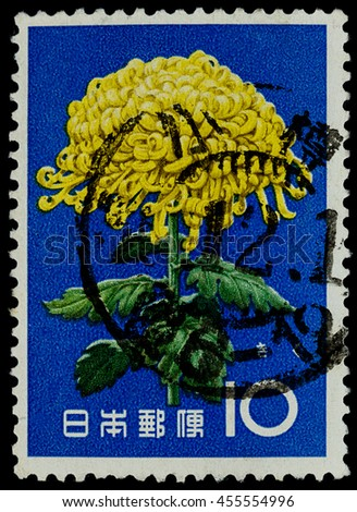 """BANGKOK, THAILAND - JULY 18, 2016: A postage stamp printed in Japan shows yellow mum flower plant, series """"Flower"""", circa 1961. - stock photo"""
