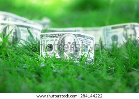 Banknotes money over green grass background - stock photo