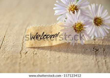 banner with welcome and  blossoms  - stock photo