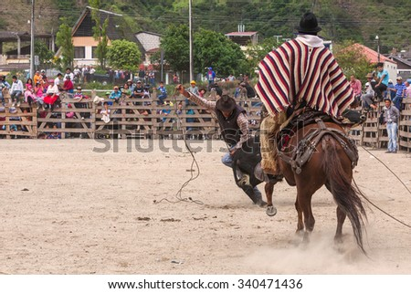 Banos, Ecuador - 30 November 2014: Young Latin Cowboys Chasing A Bull And Trying To Catch It With A Lasso, South America  In Banos On November 30, 2014 - stock photo