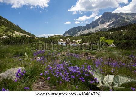 Banski Lakes, Pirin Mountain, Bulgaria - stock photo