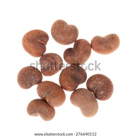 Baobab tree seeds isolated on white background - stock photo