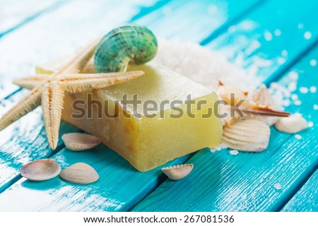 Bar Of Soap, Cosmetics, Nature. - stock photo