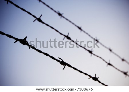 barb wire against blue sky - stock photo