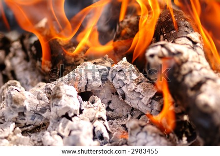 barbecue concept close up shot - stock photo