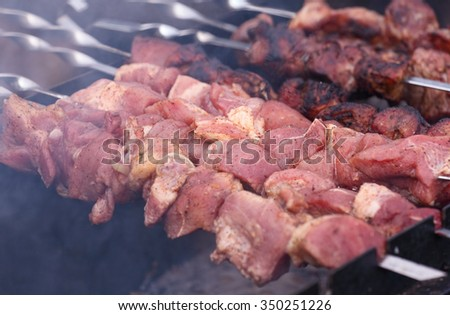 Barbecue grilled pork kebabs meat on skewer, selective focus - stock photo