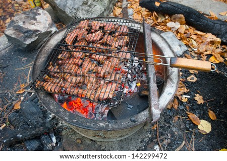 Barbecue. Meat fried in a lattice on coals