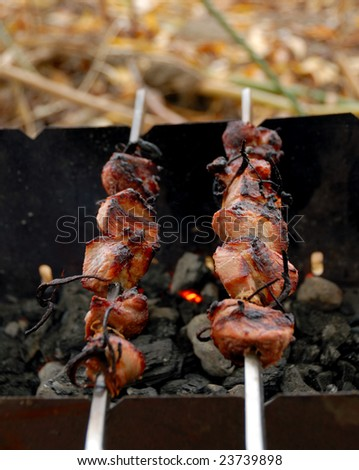 Barbecue. Meat fried in a lattice on coals.