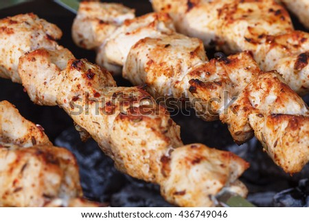Barbecue skewers with meat on the brazier. Grill chicken shish kebab - stock photo