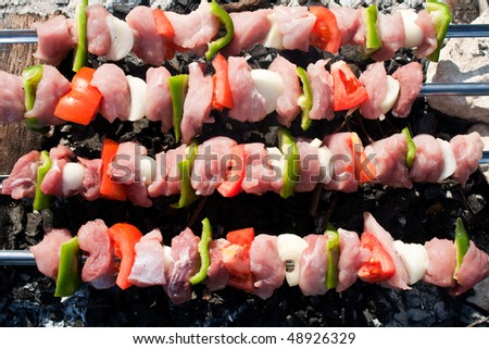 Barbecue with raw meat skewers