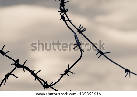 Barbed wire against moody sky. Toned shot, closeup. - stock photo